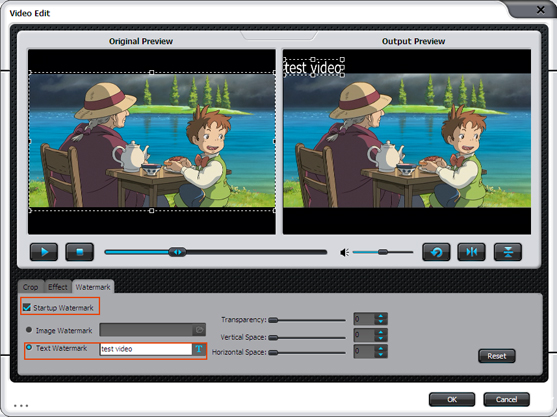 iSkysoft DVD Ripper screenshot